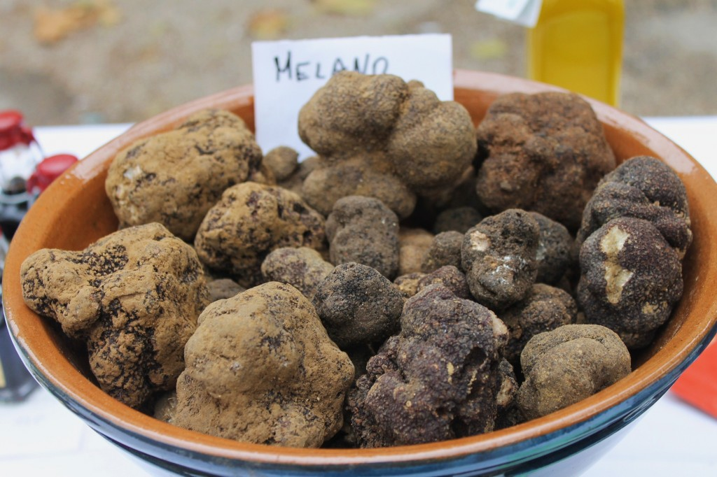 Tuber Melanosporum - that's a black truffle to you.