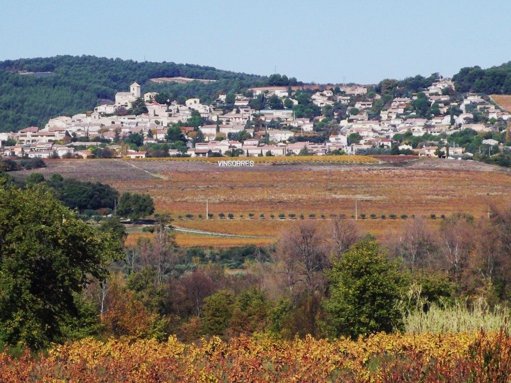 The village of Vinsobres in late autumn, after the leaves on the vines have turned golden.